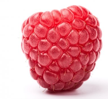 raspberry on white