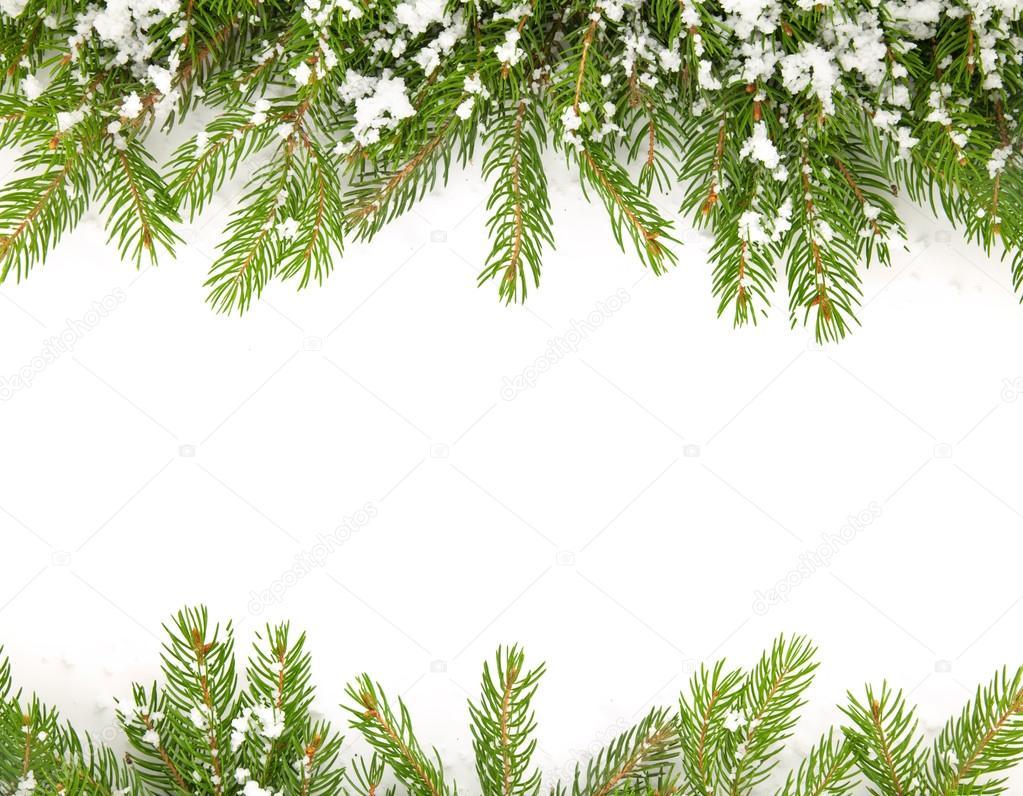 Рамка для открытки ветка сосны со снежком, анимация днем рождения