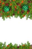 Fotografie Vánoční pozadí. Eva rámec
