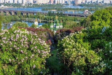 View of the monastery Vydubitsky