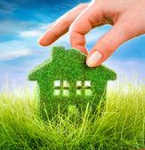 dům na zelené trávě