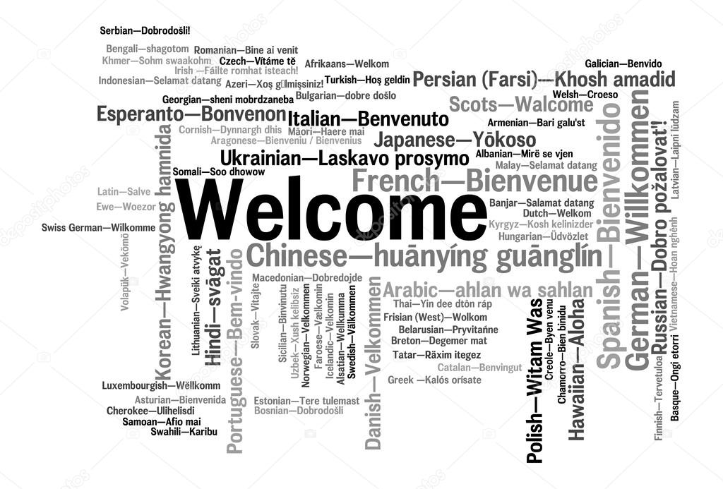 Welcome phrase words cloud concept — Stock Photo © Paulpaladin #43627085