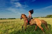 Fotografie schöne Mädchen auf einem Pferd in Landschaft