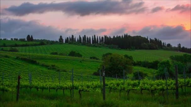 brzy ráno nad vinohrady