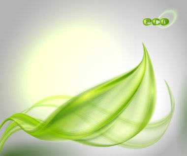 Abstract background with green leaf