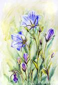 Fotografie Aquarell der Glocke Blumen