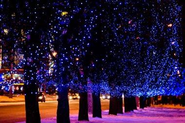 Christmas street light