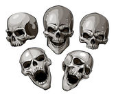 Photo Black-and-white image with skulls