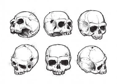Hand-drawn skulls