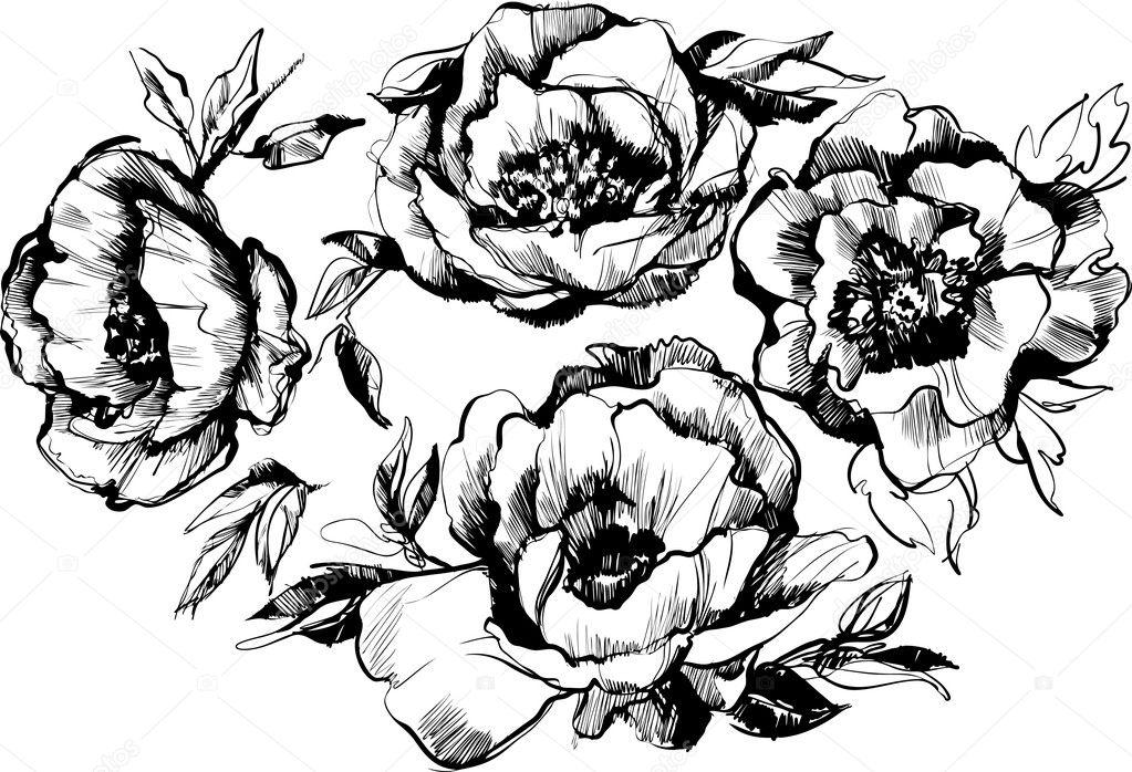 sketch of a beautiful wreath of flowers peonies