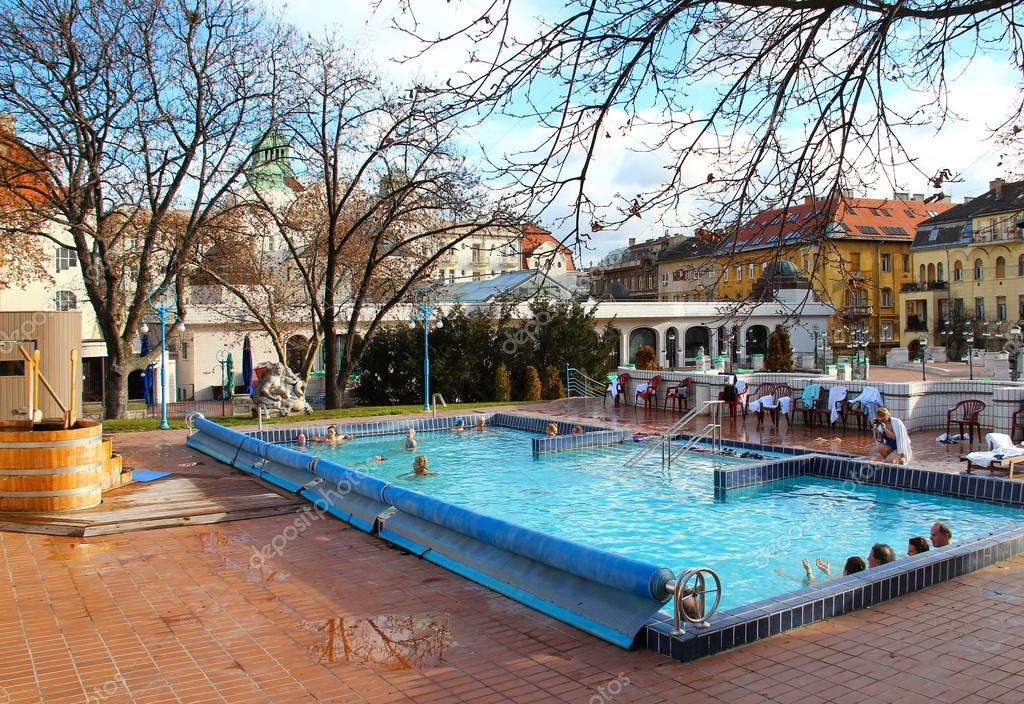 https://st.depositphotos.com/1000775/3996/i/950/depositphotos_39961933-stock-photo-gellert-bath-in-budapest.jpg