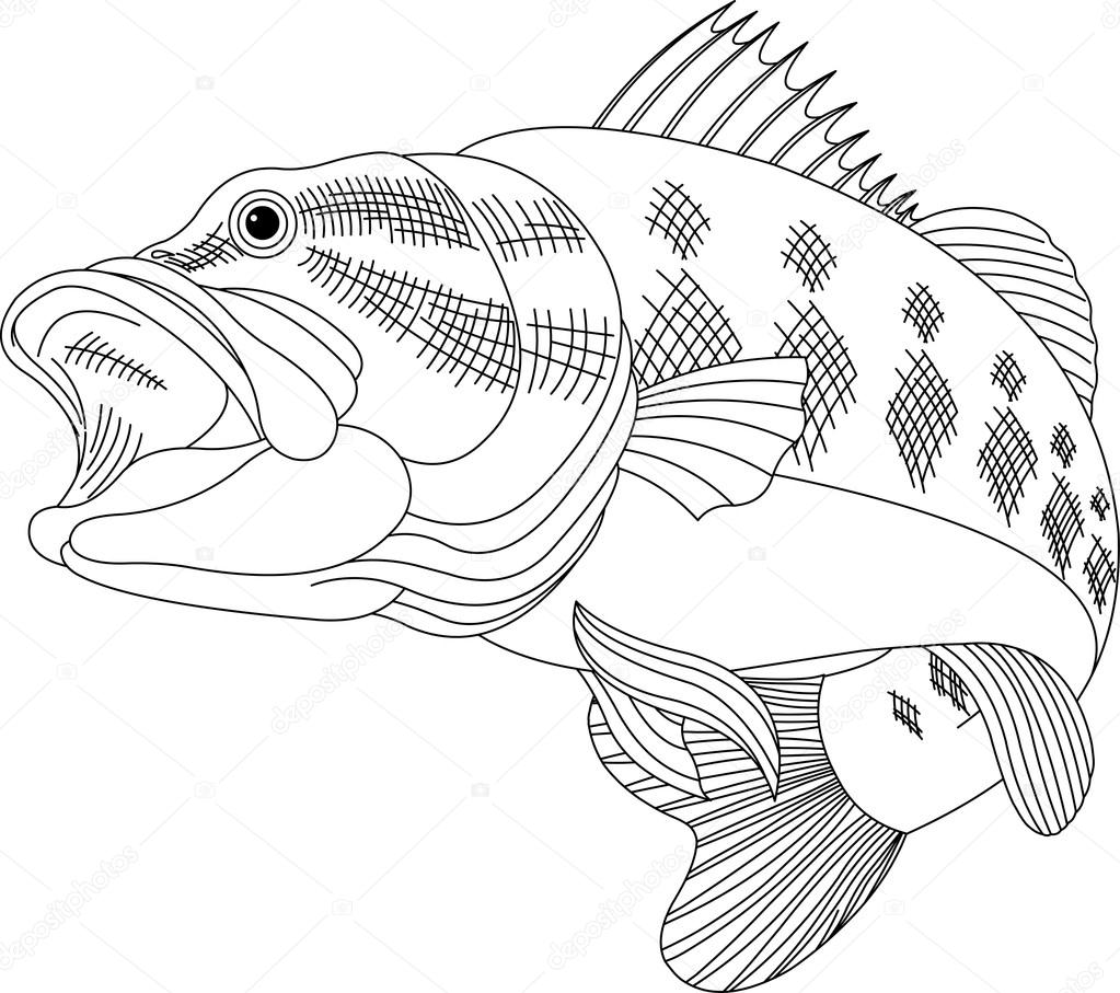 - ᐈ Fish To Color Stock Images, Royalty Free Fish Coloring Page
