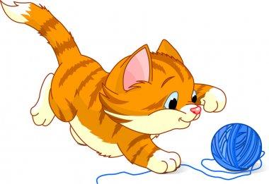 Playful Kitten