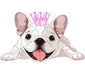 Fotografia bulldog royalty