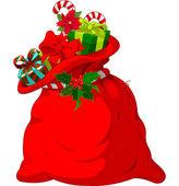 Fotografie Santa s sack