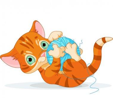 Playful Tubby Kitten