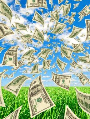 Anticipated cash, vertical.