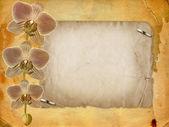 Fotografia vecchia cartolina Congratulazioni o invito con un ramo di p