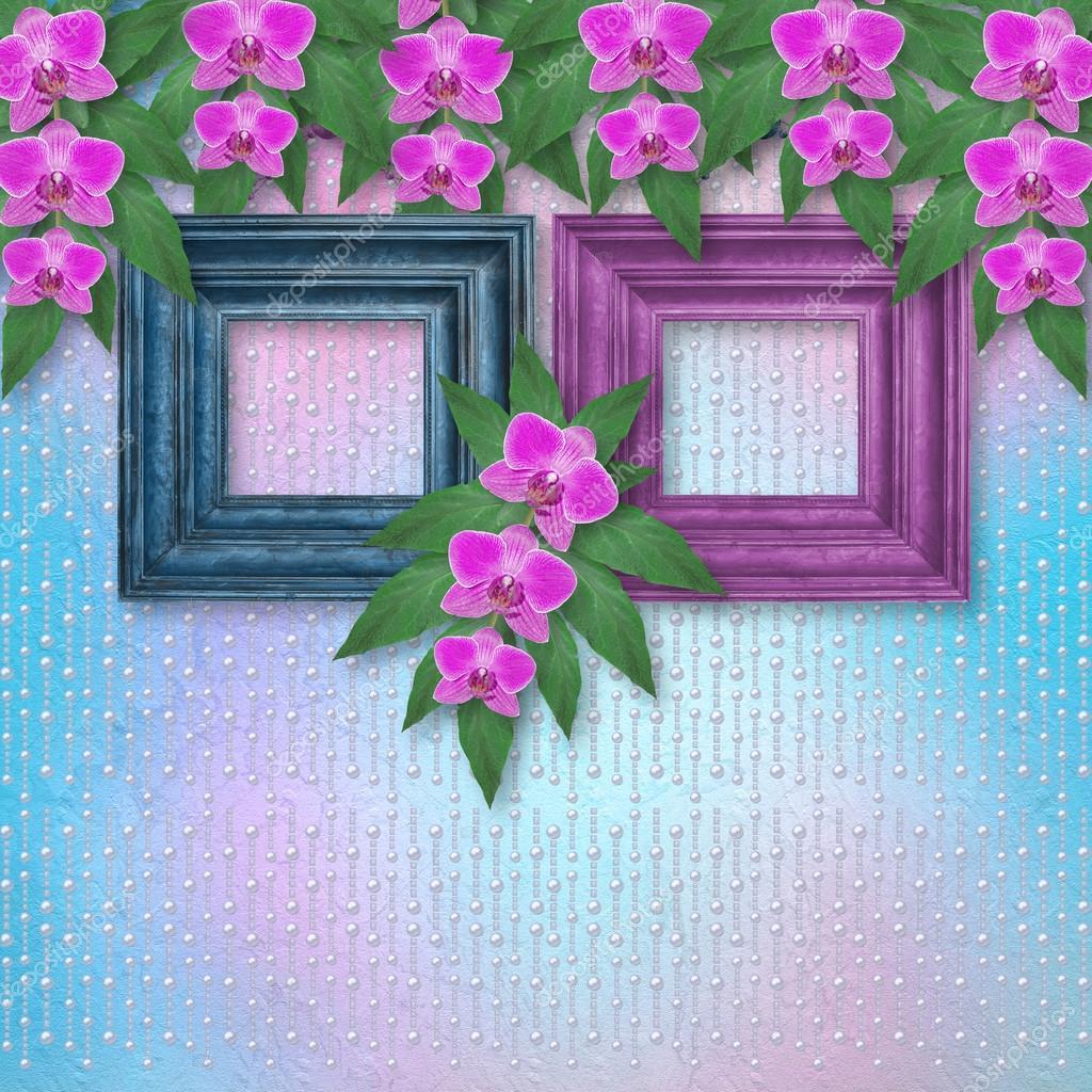 Marcos de madera en la pared con ramas de hermosas orquídeas para ...