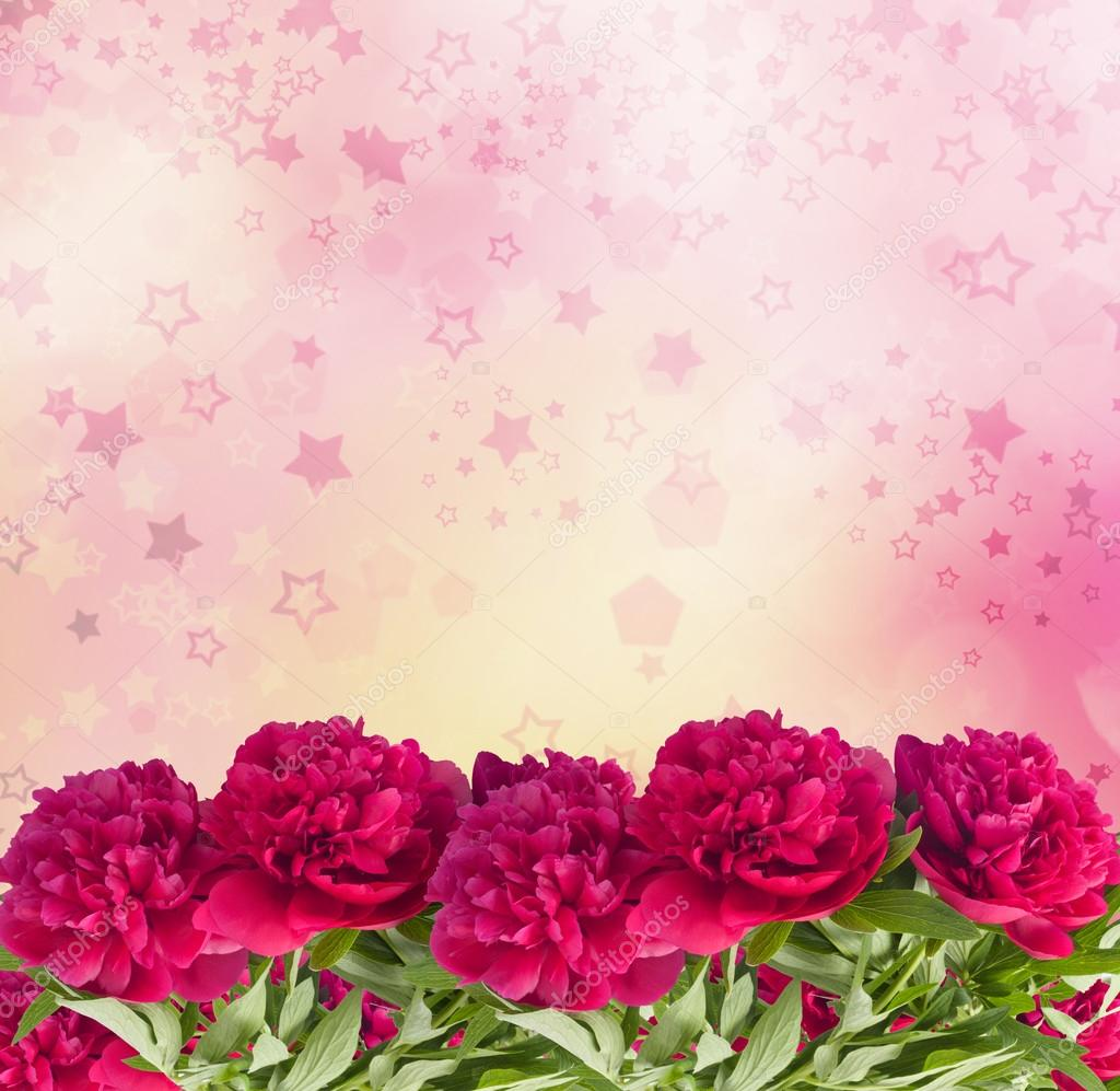 Beautiful bouquet of pink peonies on the abstract background wit