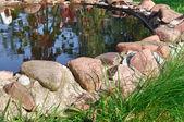 kamenné ohraničení kolem zahradního jezírka - obraz hdr