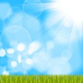 Fotografie green grass on background