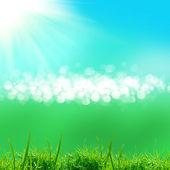 zelené pole s modrou oblohou