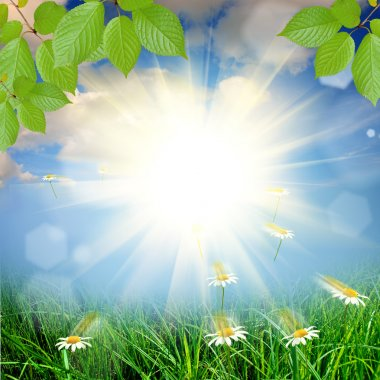 "Картина, постер, плакат, фотообои ""зеленый фон природы цветы природа программа"", артикул 22352525"