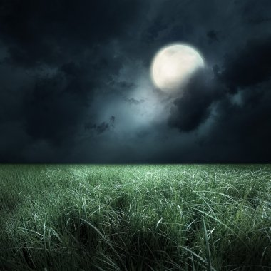 green field at the moon light