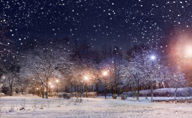 Night city park under first snow