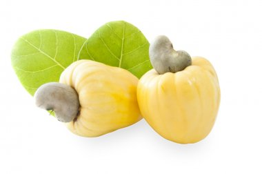 Cashew Nut Apples