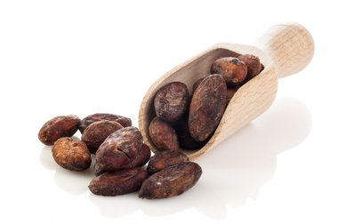 Cocoa beans on the wooden scoop