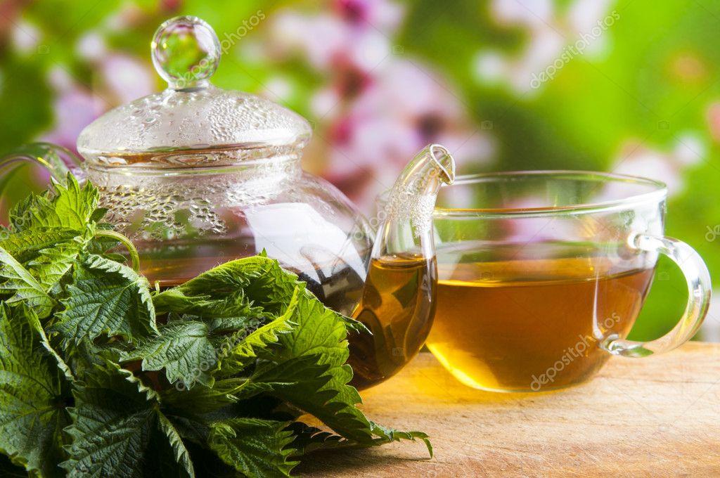 чай из крапивы для похудения рецепт