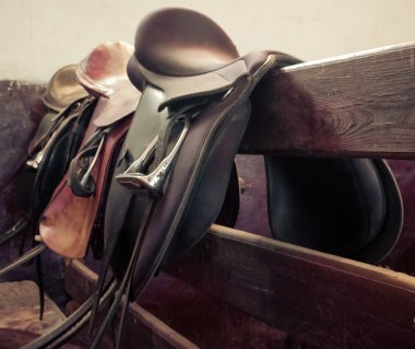 leather saddle horse, vintage retro style