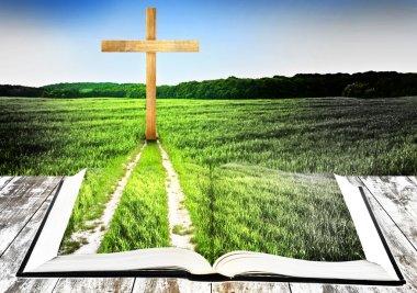 Way to cross