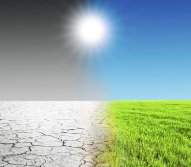 Green grass and dry desert land