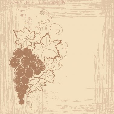 Grapes branch on vintage background