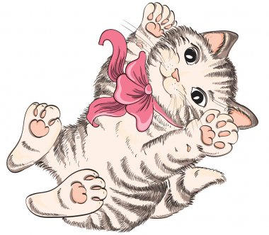Kitty with bow. Vector hand drawing clip art vector