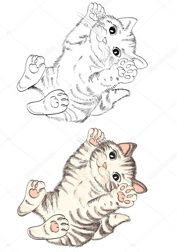 gato de dibujos animados para colorear libro — Archivo Imágenes ...
