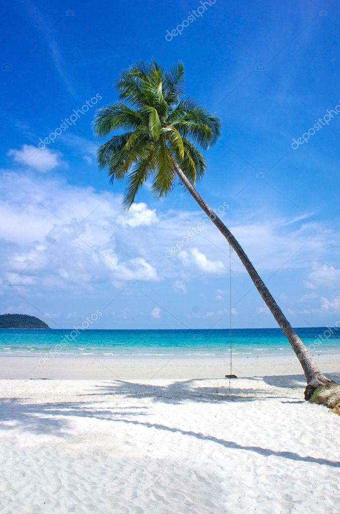 Tropical beach. Beach chairs on the white sand beach, foreground with palm leaf