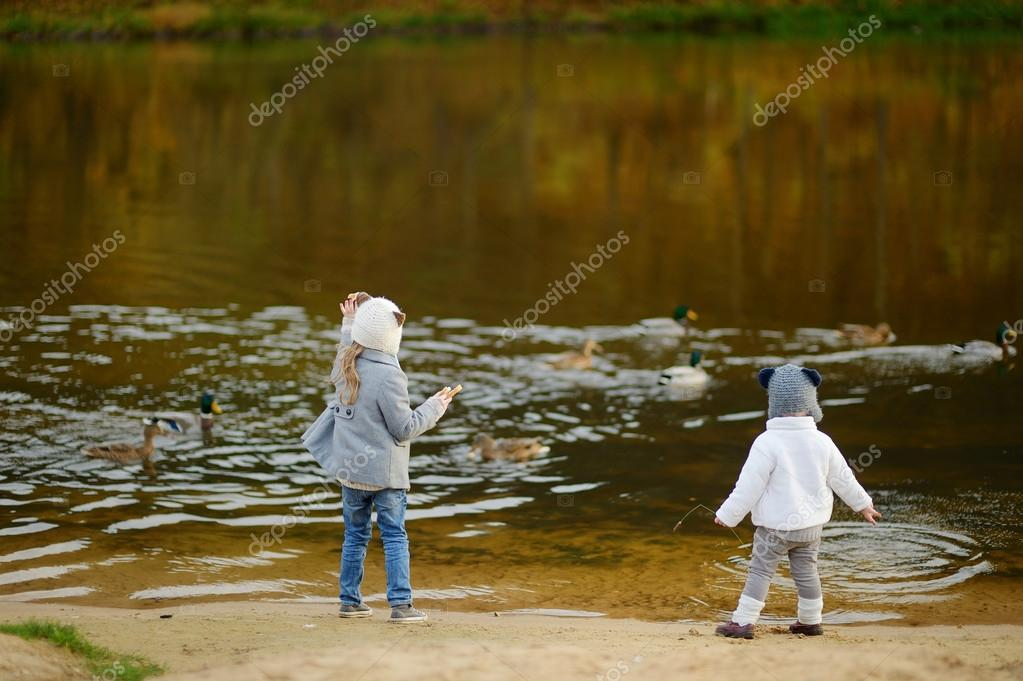 Feeding ducks at autumn