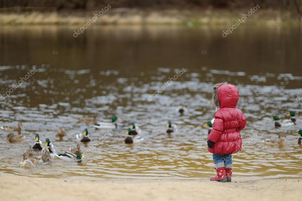 Little toddler girl feeding ducks at autumn