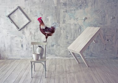 Surreal white interior with red rooster.
