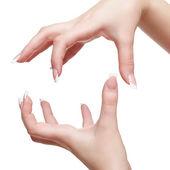 izolované ruce s manikúrou