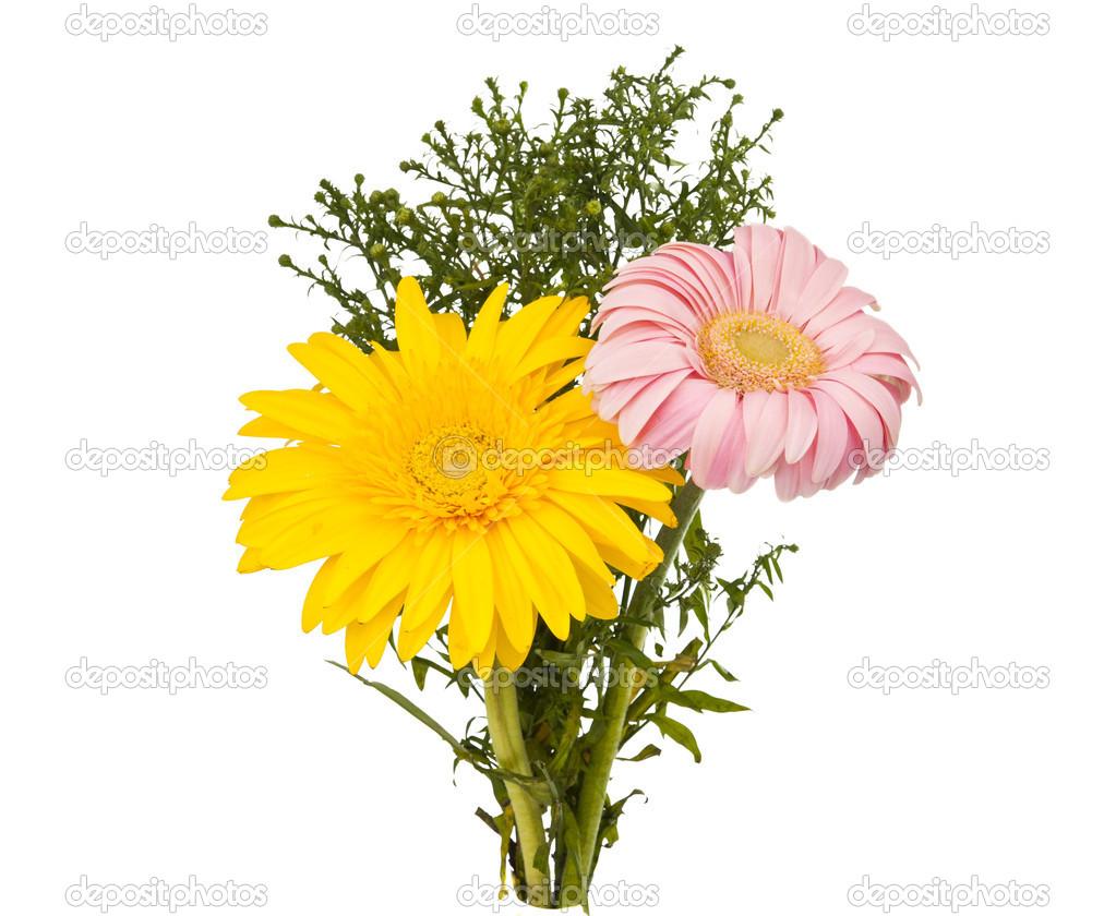 Bouquet de fleurs de gerbera photographie ksena32 for Photo bouquet de fleurs 94