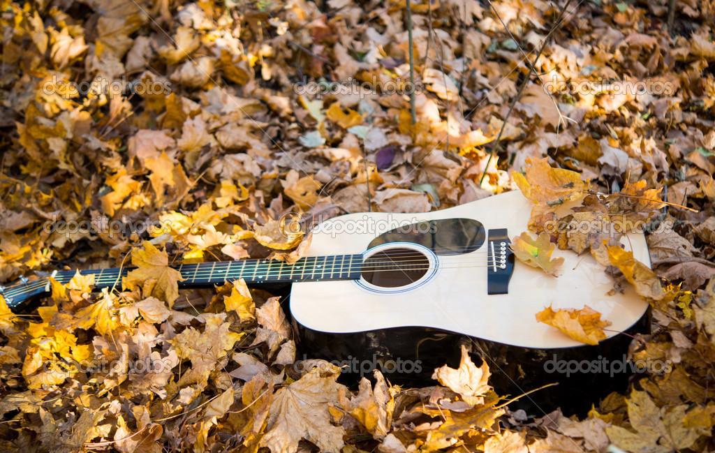 это гитара и осенние листья картинки советуют тем, кто