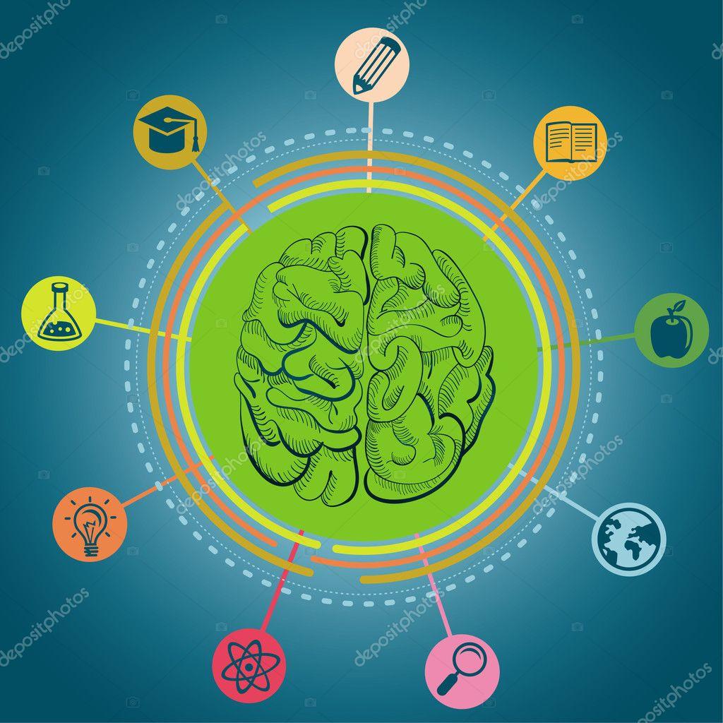 Vector education concept