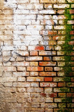 Texture of old wall