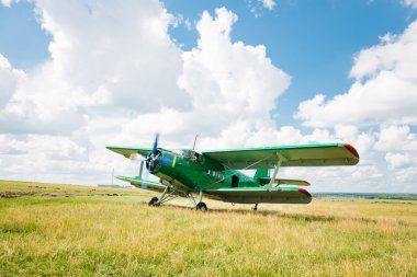 old airplane on green grass