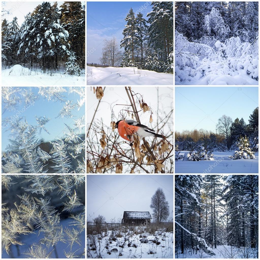 фото коллаж краснообск зимой теперь